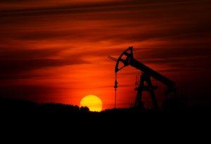 Oil, forex, xero markets, market insights